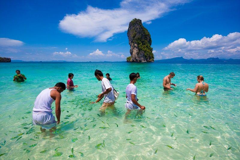 Best Phi Phi Island Tour From Phuket