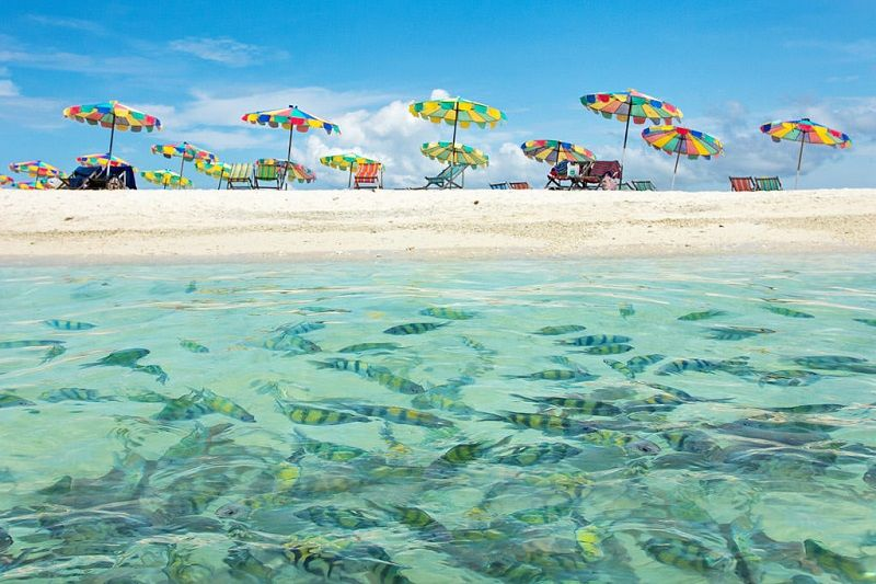 Phi Phi Islands Tours - Your Best Deal for Excursions