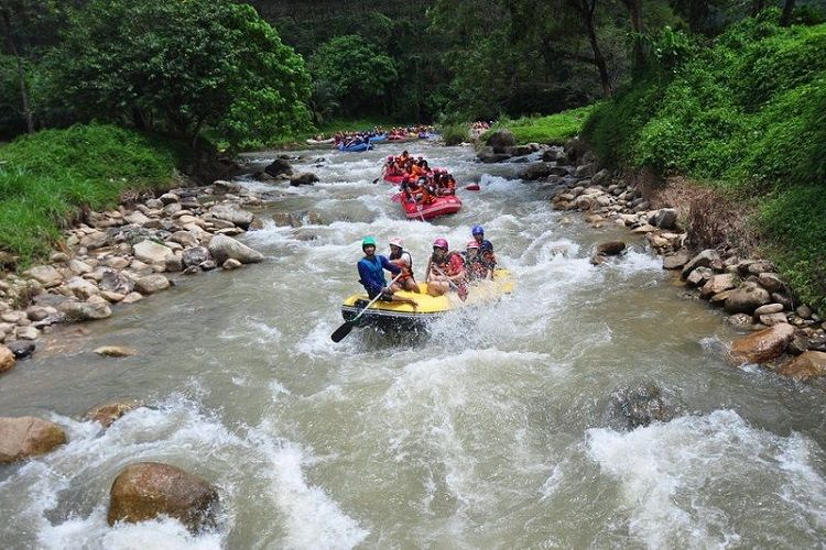 White Water Rafting Tours